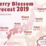 Tahun 2019, Kapan Sakura Akan Mekar?